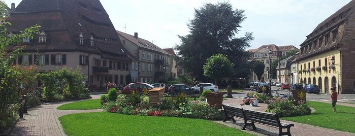 Parc de Wissembourg is one of (Temp) Best of Alsace.