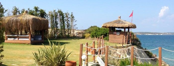 Dilaila Beach Club is one of Ceyda'nın Kaydettiği Mekanlar.