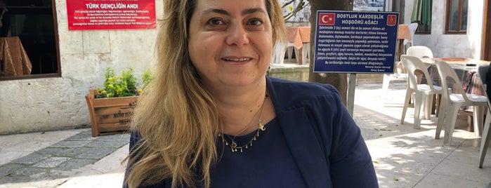 Muharip Gaziler Derneği is one of Orte, die Gülcan gefallen.