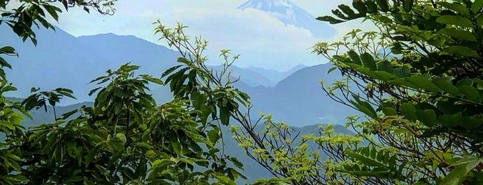 Mt. Takao is one of Tempat yang Disukai Brandon.