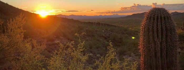 Arizona is one of Gespeicherte Orte von Brandon.