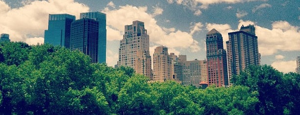 Central Park is one of New York, my dear New York.