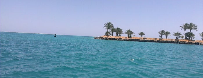The Beach of Steigenberger Al Dau Beach Hotel is one of Египет.