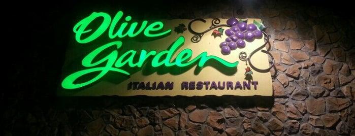 Olive Garden is one of Angel 님이 좋아한 장소.