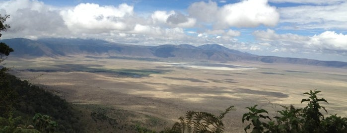 Ngorongoro Crater is one of Tempat yang Disukai Dmitry.