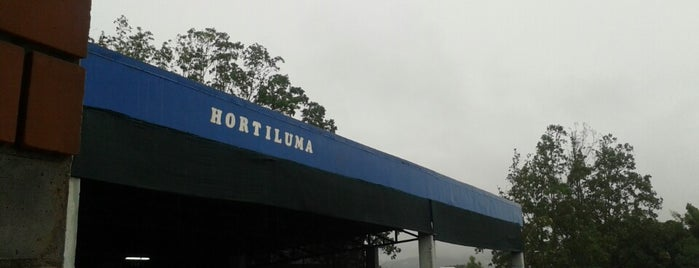 Hortiluma is one of Leonardo 님이 좋아한 장소.