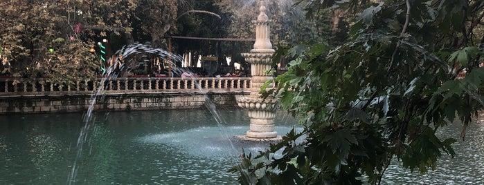 Balıklıgöl Dergah is one of Urfa-Antep.