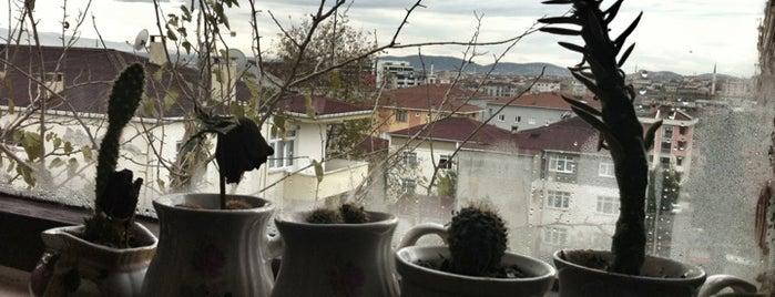 Yakacık is one of สถานที่ที่ Murat ถูกใจ.