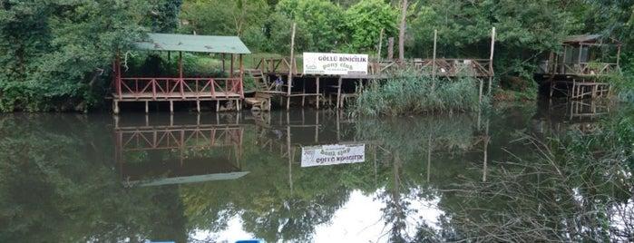 Yeşil Vadi Mangal is one of สถานที่ที่ Can ถูกใจ.