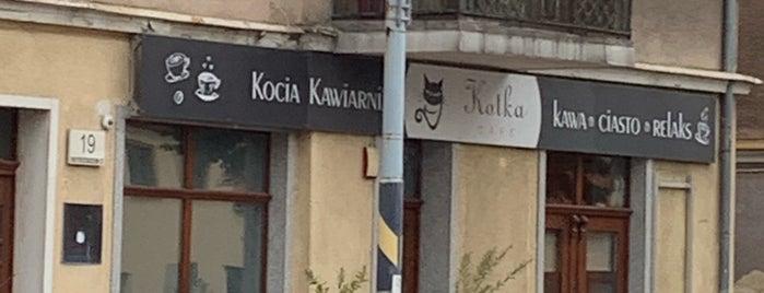 Kotka Cafe is one of Gdansk.