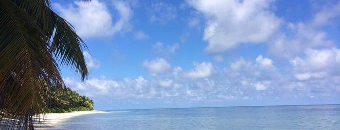 Desroches Island Resort is one of Iandolo : понравившиеся места.