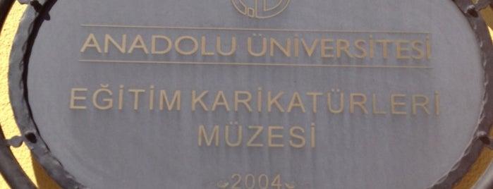 Eğitim Karikatürleri Müzesi is one of Eskisehir gidilecek.