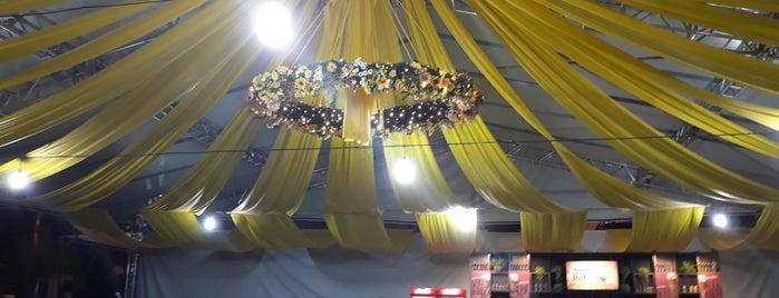 36° Festa Pomerana is one of สถานที่ที่ Roy ถูกใจ.