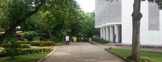 Universidad de San Buenaventura is one of Aquí Se debería Poder Rayar las Paredes.