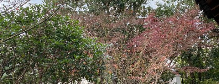 Yoshikien Garden is one of Chris : понравившиеся места.
