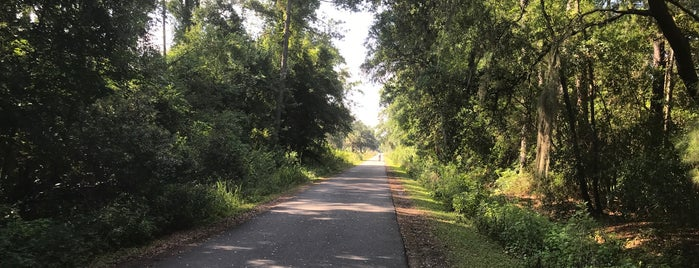 Gainesville Hawthorne Trail is one of UF Bucket List.