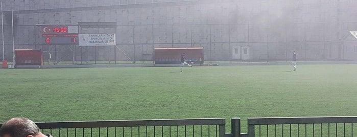 Ahmet Suat Özyazıcı Stadı is one of Tempat yang Disukai Hakan.