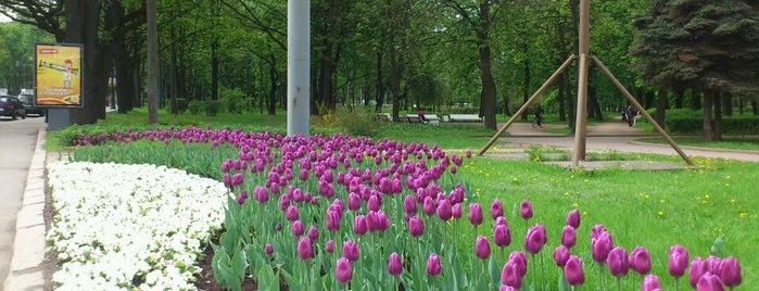 Парк «Тихий отдых» is one of Stanislav : понравившиеся места.