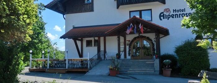 AKZENT Hotel Alpenrose is one of AKZENT Hotels e.V..