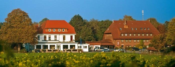 AKZENT Hotel Cordes & Restaurant am Rosengarten is one of AKZENT Hotels e.V..