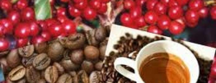Mundo do Café is one of Coffee.