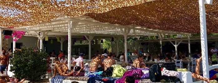 Taverna Pantelis is one of Antiparos.