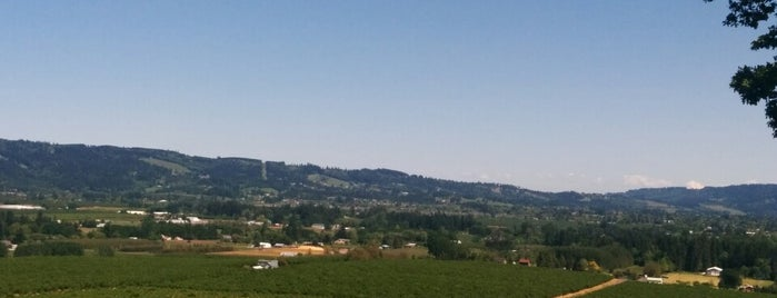 Anderson Family Vineyard is one of Wine Country.