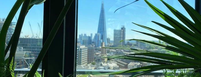 Seabird is one of London.