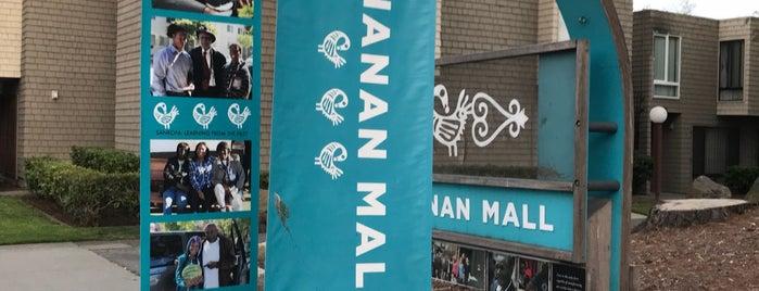 Buchanan Street Mall is one of San Francisco,Cali.
