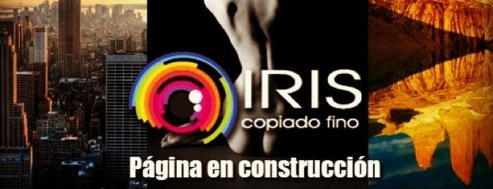 Iris Copiado Fino is one of Lugares favoritos de Caui.