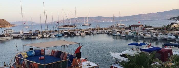 Kardeşler Balık Restourant is one of Sevil : понравившиеся места.