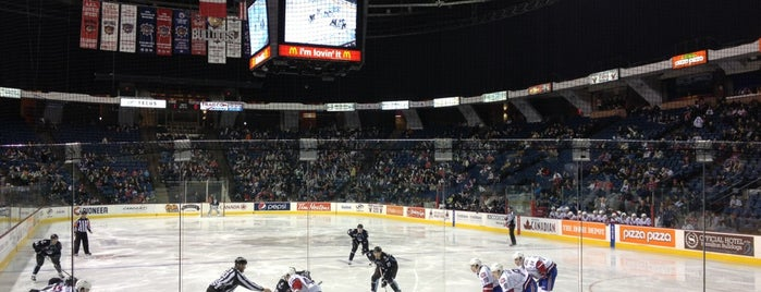 FirstOntario Centre is one of sports arenas and stadiums.