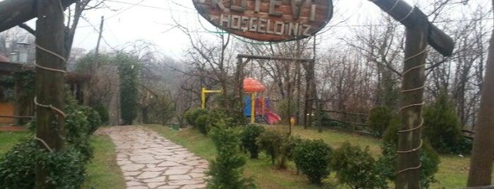 Yazıcı Köyevi is one of Kahvaltı.