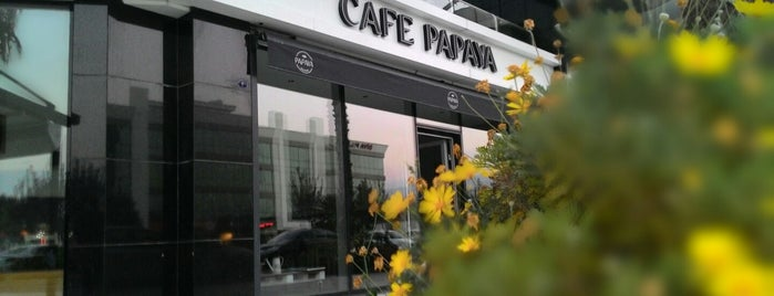 Cafe Papaya is one of Yemek.