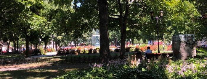 Le Square is one of Apportez votre vin - Montréal.