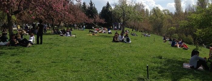 Seğmenler Parkı is one of Ankara Akşamları.