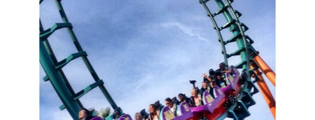 Boomerang:Coast to Coaster is one of ROLLER COASTERS.