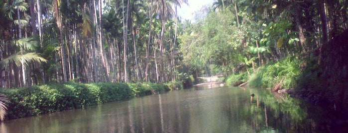 Karakkode River is one of Jose'nin Kaydettiği Mekanlar.