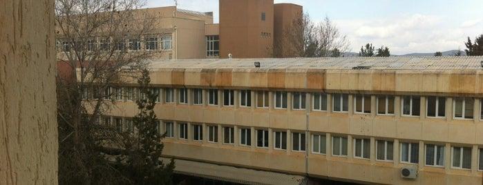 Fen Edebiyat Fakültesi is one of Lieux qui ont plu à Mesut.