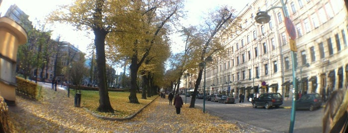 Helsinki is one of Scandinavia & the Nordics.