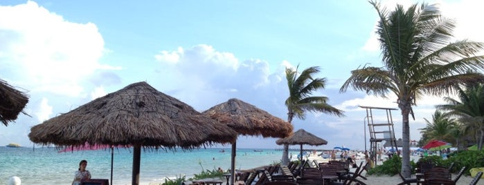 Fusion Beach Hotel Bar & Grill is one of Playa Del Carmen.