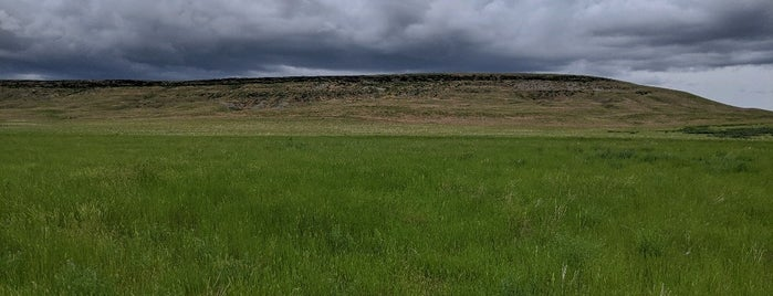 First Peoples Buffalo Jump State Park is one of CBS Sunday Morning.