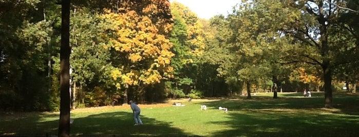 Großer Tiergarten is one of Berlin with kids.