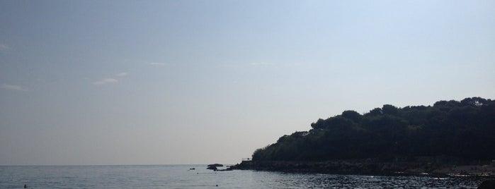 Форосский Пляж is one of Crimea.