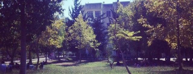 Eğitim Fakültesi is one of Orte, die Kadir gefallen.