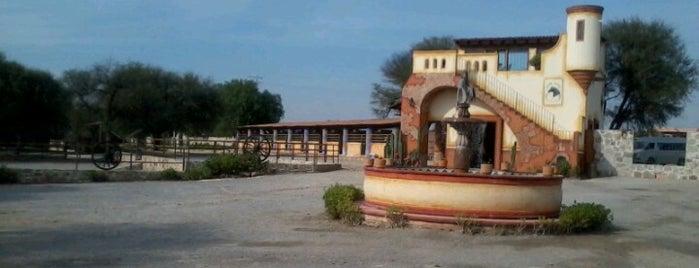 Viñedos Azteca is one of Lugares favoritos de Yaz.