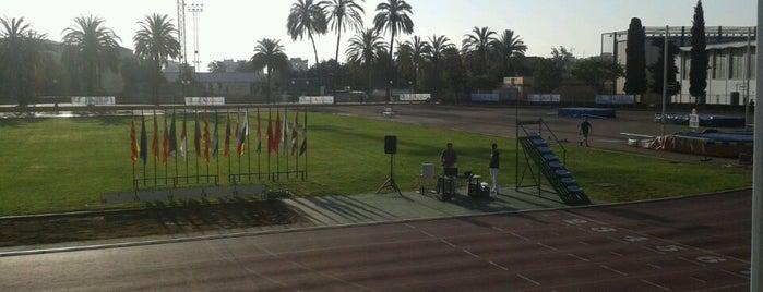 Ciudad Deportiva Carranque is one of Tempat yang Disukai Aurelio.
