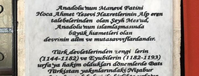 Şeyh Mes'ud Zaviyesi is one of Urfa to Do List.
