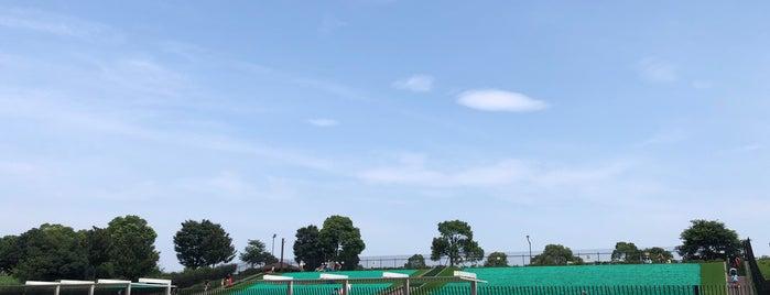舎人公園 ソリゲレンデ is one of Masahiro'nun Beğendiği Mekanlar.
