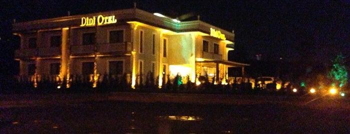 DİDİ OTEL SAPANCA is one of Posti che sono piaciuti a Sevil.